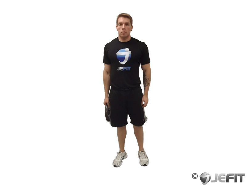 Weight Plate One Arm Shrug