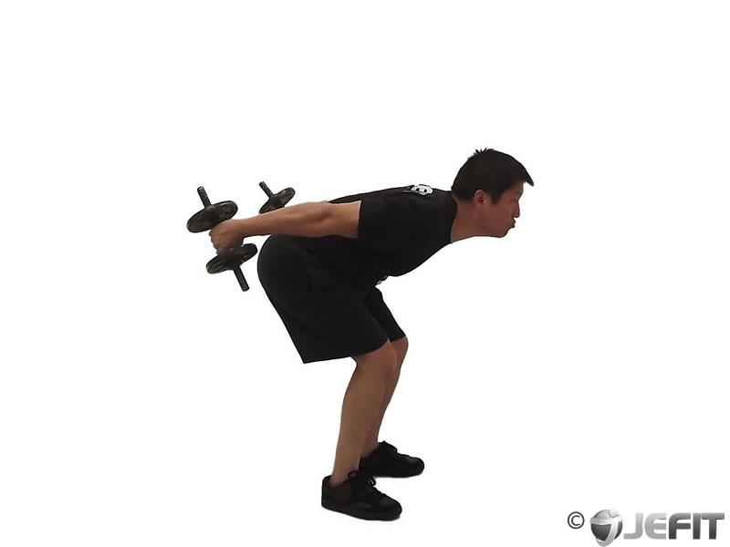 Dumbbell Standing Triceps Kickback Exercise Database
