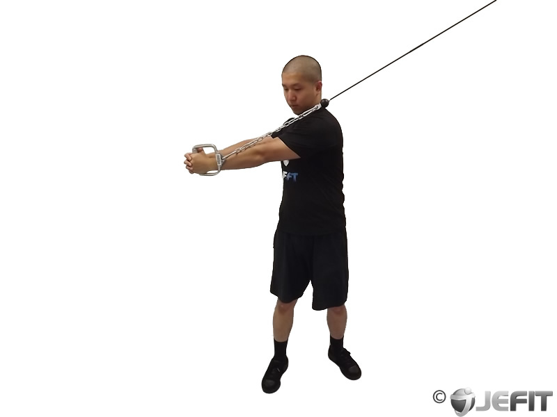 Cable Pallof Press With Rotation Exercise Database