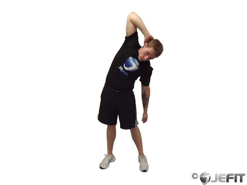 Standing Lateral Stretch Exercise Database Jefit