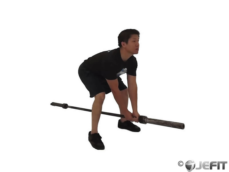 Barbell Bent Over Two Arm Row