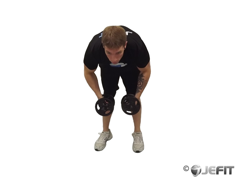 Dumbbell Palms In Bent Over Row