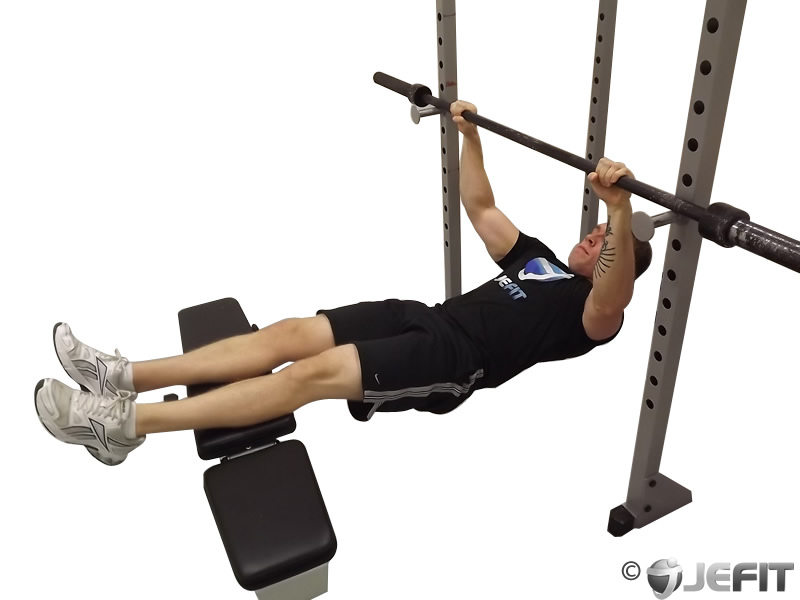 Inverted row exercise database jefit best android