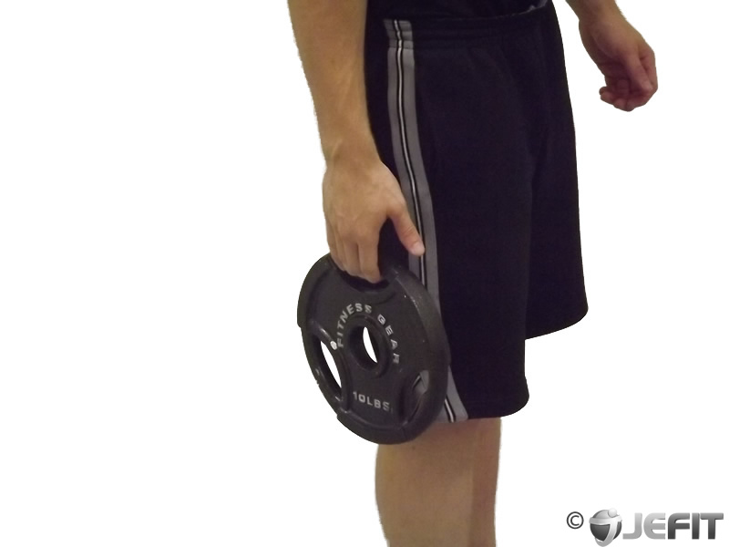 Weight Plate Standing Hand Squeeze