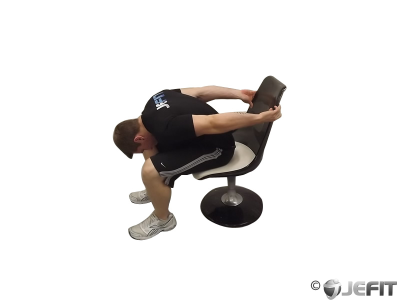 Chair Upper Body Stretch Exercise Database Jefit