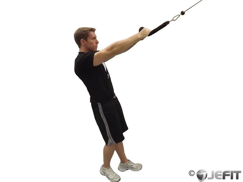 cable rope face pull exercise database jefit best android and