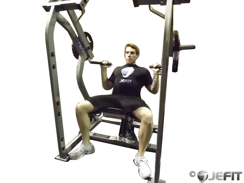 Leverage Shoulder Press - Exercise Database