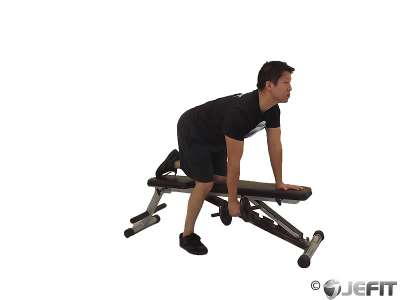 Dumbbell One Arm Row