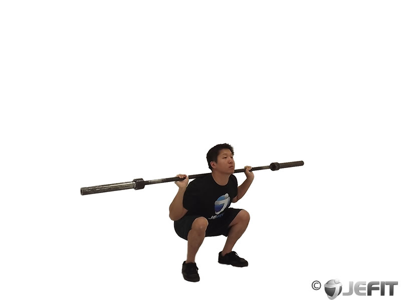 Barbell Olympic Squat