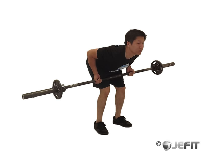 Barbell Reverse Grip Bent Over RowReverse Grip Barbell Row