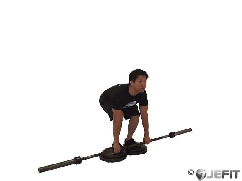 Barbell Romanian Deadlift From Deficit Exercise Database