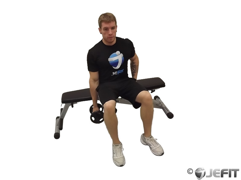 Dumbbell Seated Side Bend