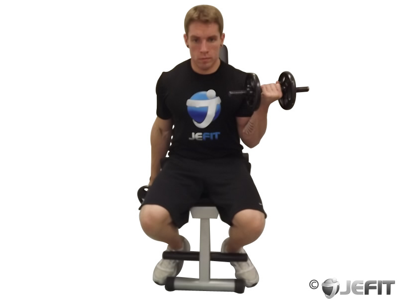 Dumbbell Alternate Seated Curl