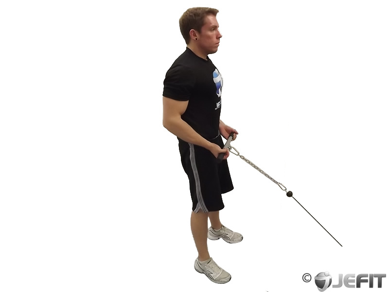 Cable drag curl exercise database jefit best android for Floor underhand cable fly