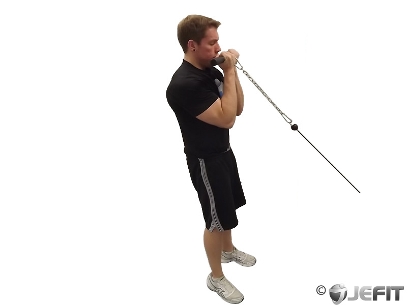 Cable Close Grip Curl
