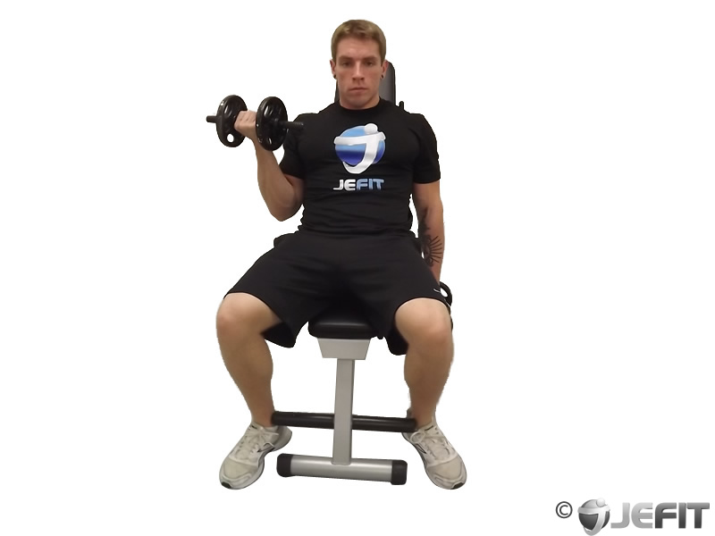 Dumbbell One Arm Seated Curl