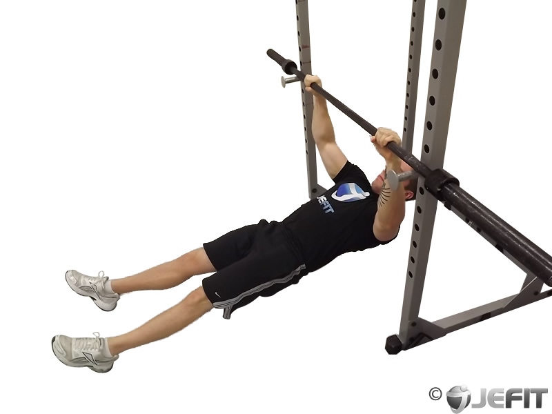 Barbell high inverted row exercise database jefit