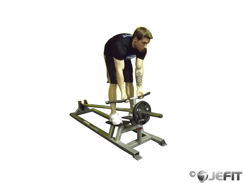 Machine T-Bar Reverse Grip Row