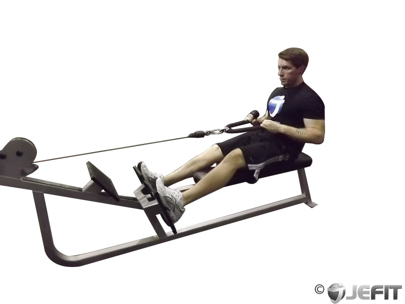 Pics For > Seated Row Exercise