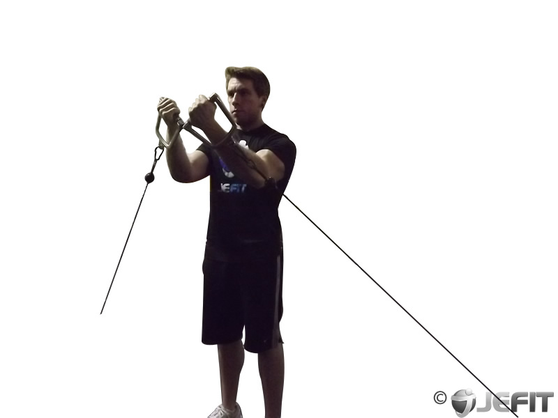 Cable Lower Chest Raise