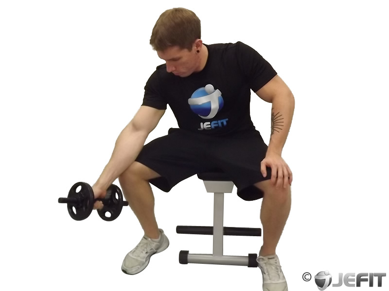 Dumbbell One Arm Seated Neutral Wrist Curl