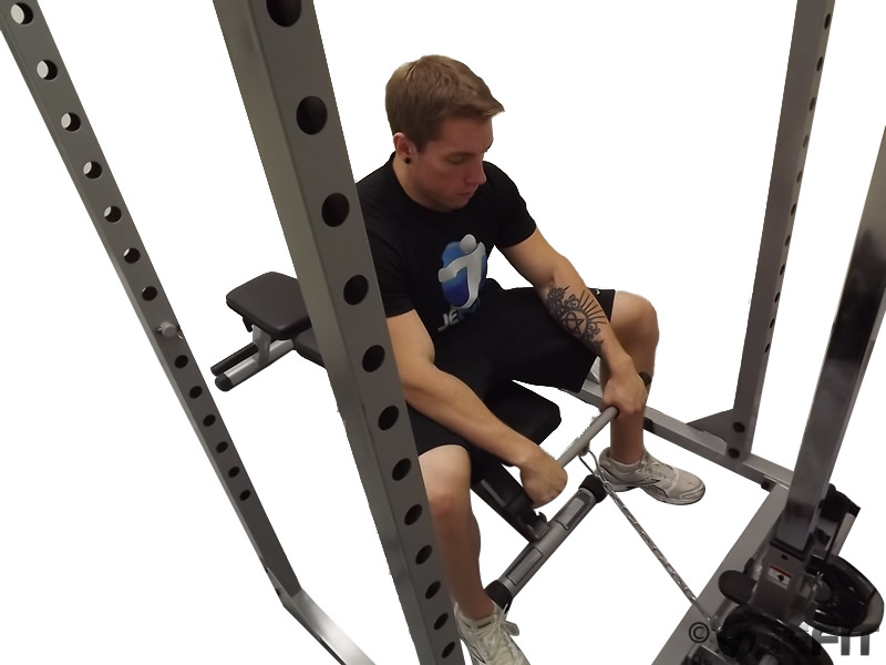 Cable Seated Reverse Grip Wrist Curl