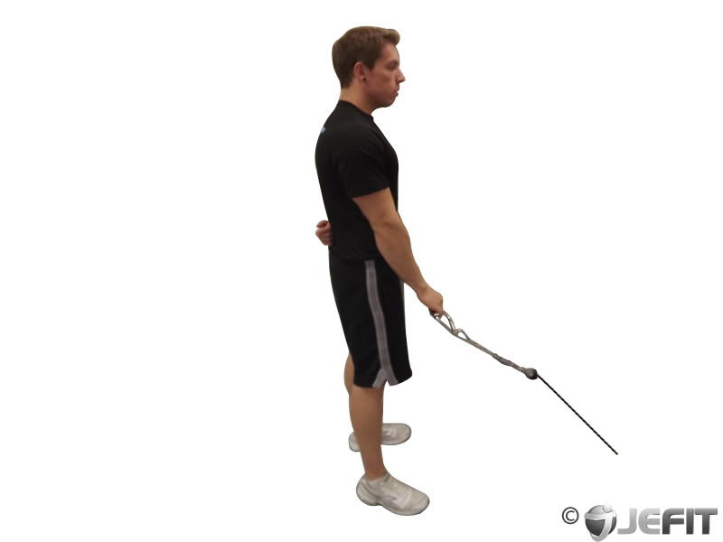 Cable Reverse One Arm Curl