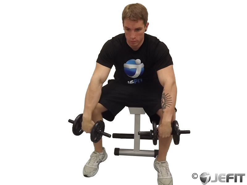 Dumbbell Seated Reverse Wrist Curl