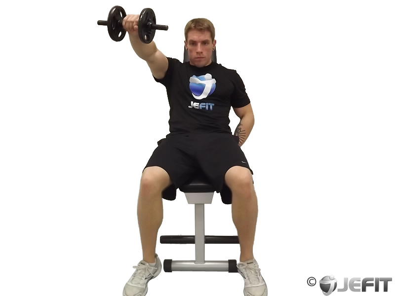 Dumbbell One Arm Front Raise On Incline Bench Exercise