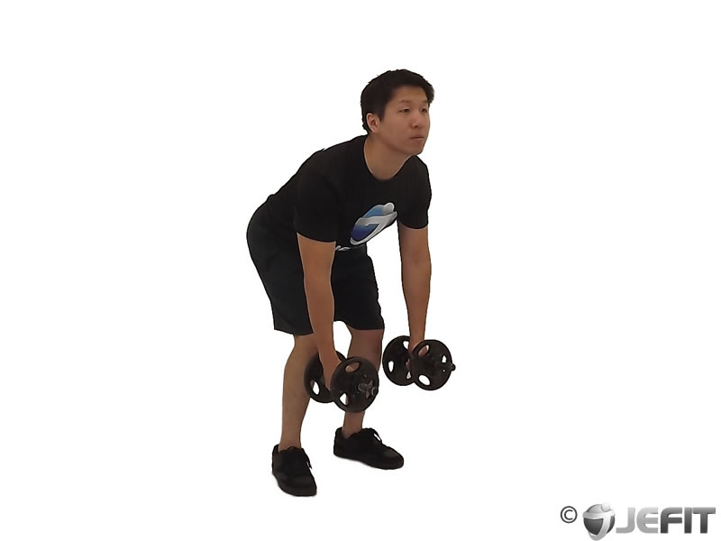 Dumbbell One Arm Bent Over Reverse Fly