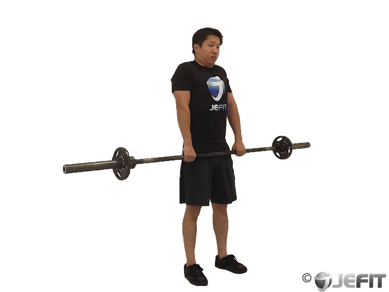 Barbell Shrug Exercise Database Jefit Best Android