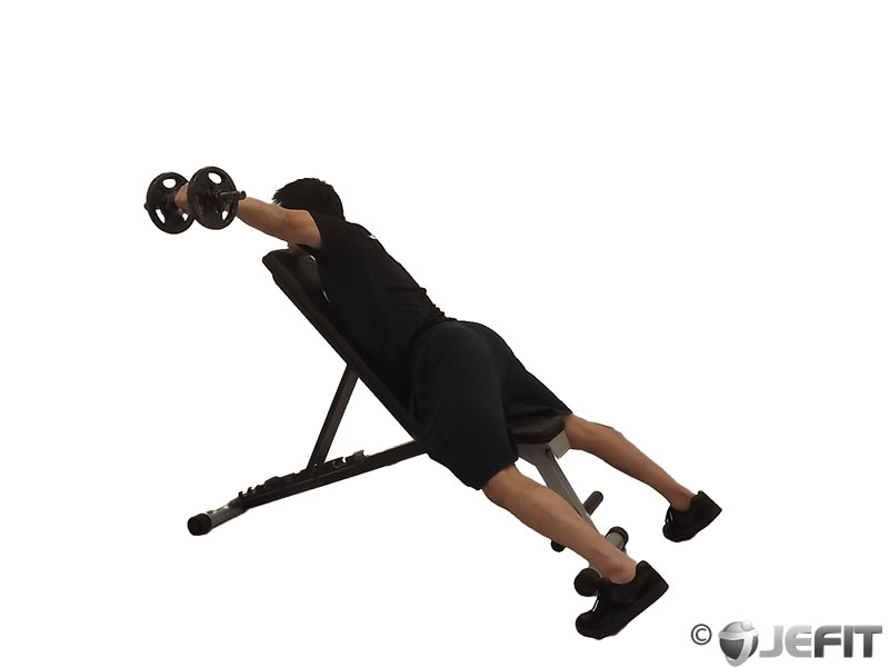 Dumbbell Alternate Reverse Fly On Incline Bench Exercise