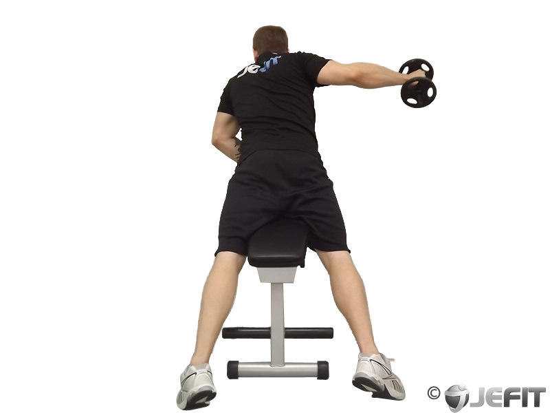 Fly Bench Part - 18: Dumbbell One Arm Reverse Fly On Incline Bench