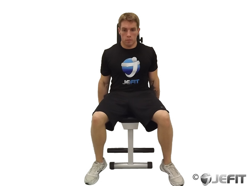Dumbbell Seated One Arm Lateral Raise