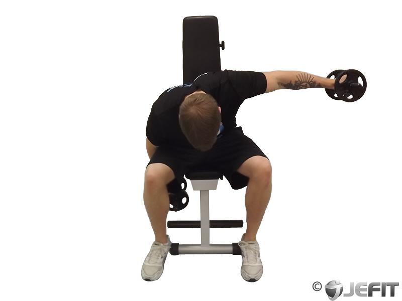 Dumbbell Bench Fly 28 Images Dumbbell Reverse Flyes