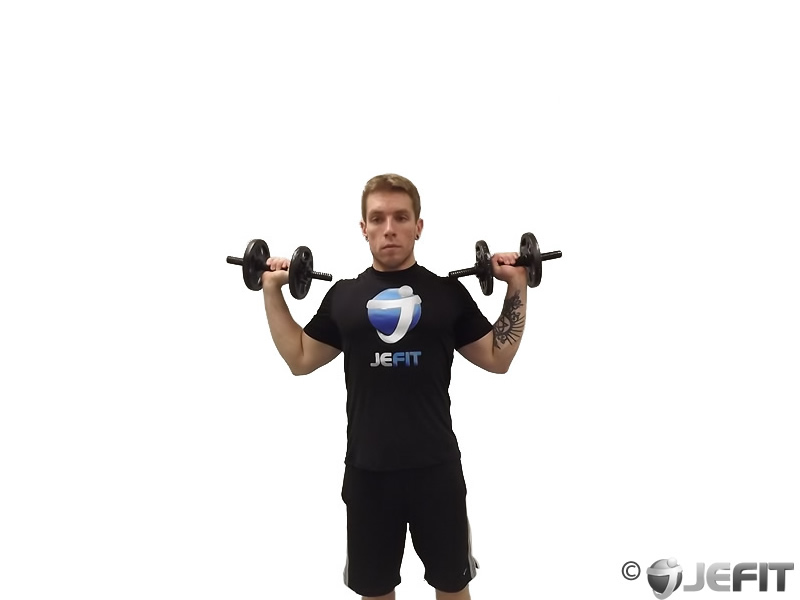 Dumbbell Standing One Arm Press