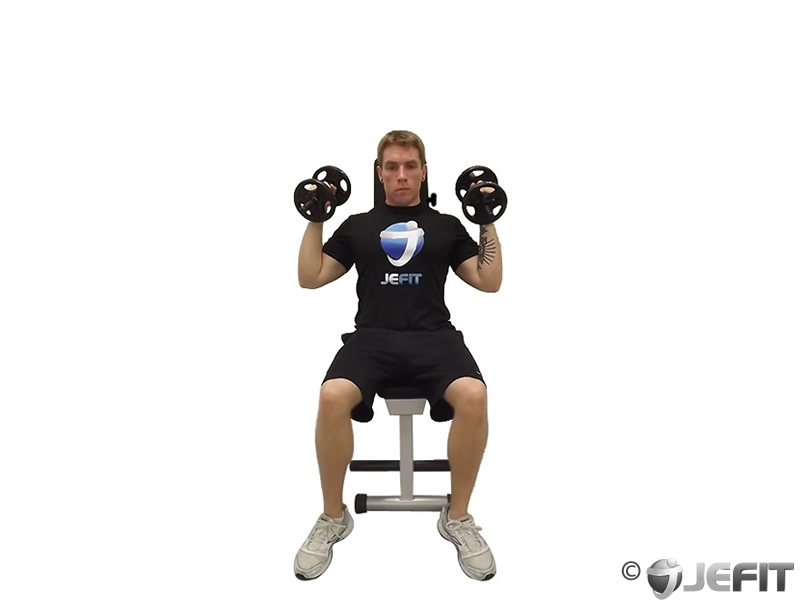 Dumbbell Seated Palms In Press