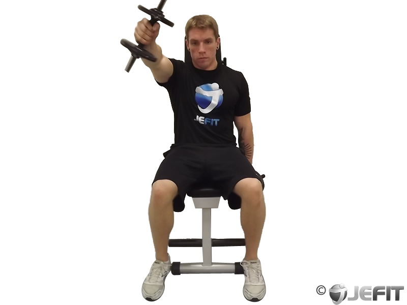Dumbbell Seated One Arm Front Raise