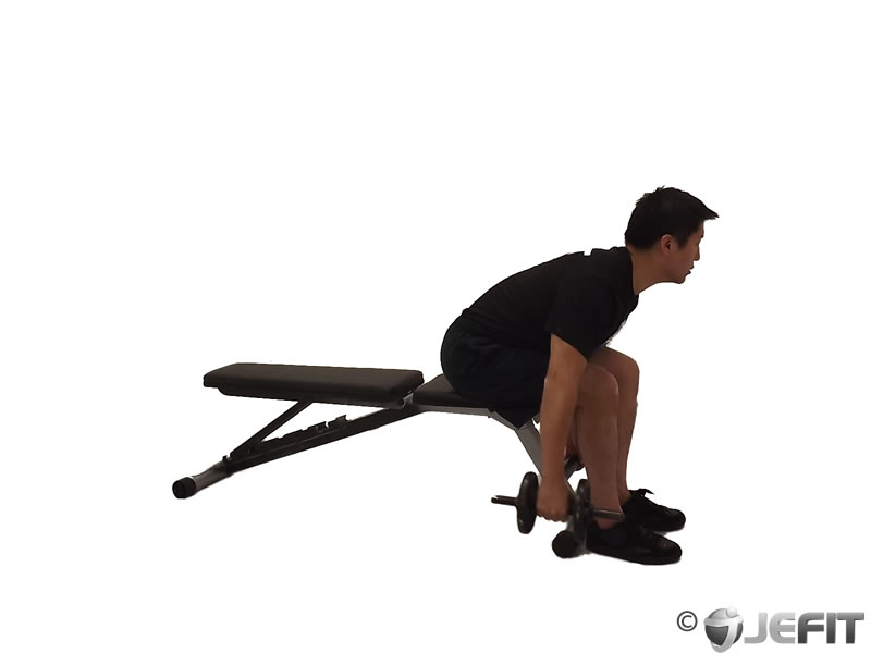 Dumbbell Seated One Arm Bent Over Reverse Fly
