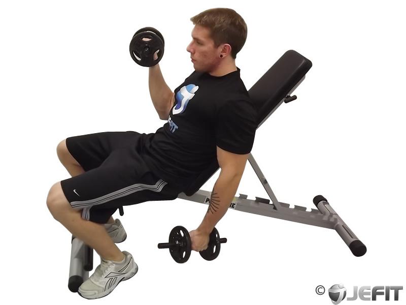 Dumbbell Alternate Incline Curl - Exercise Database ...