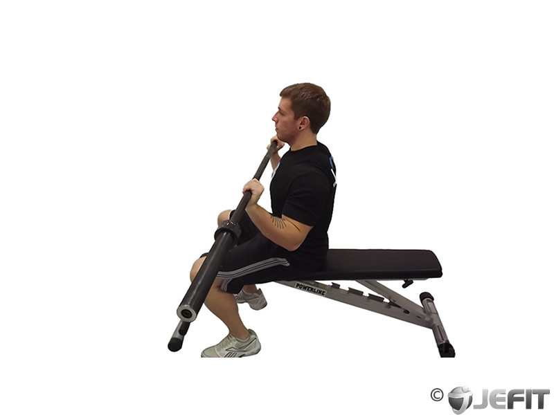 Seated Barbell Press Alternative Barbell Seated Alternating