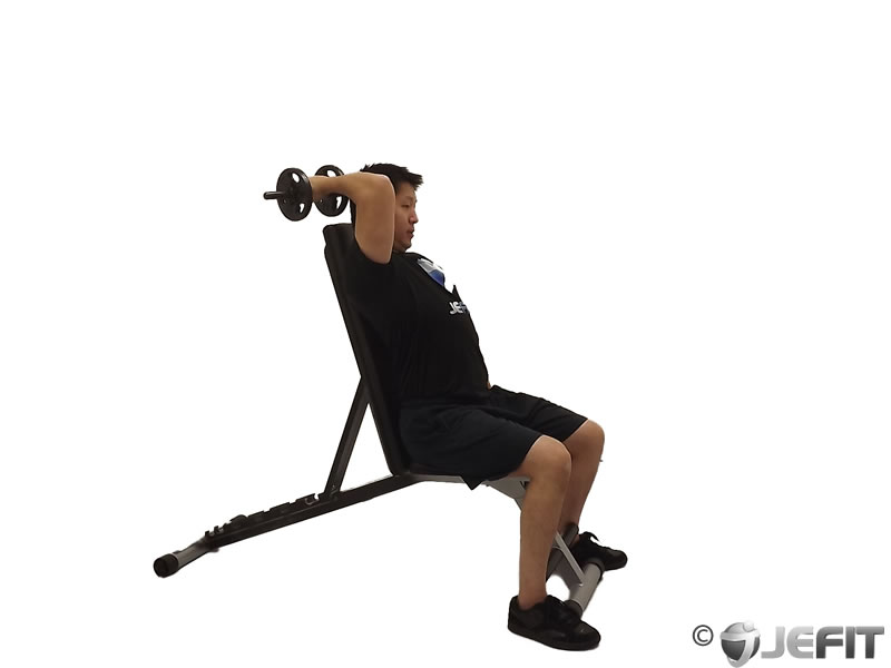 Dumbbell Seated Reverse Grip One Arm Overhead Tricep Extension