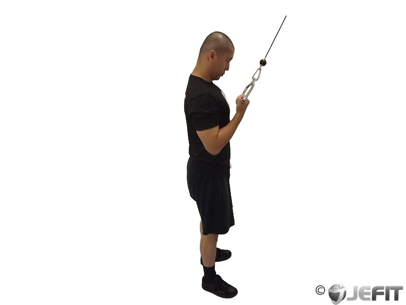 Cable Extensions Workout : Cable reverse one arm tricep extension exercise database