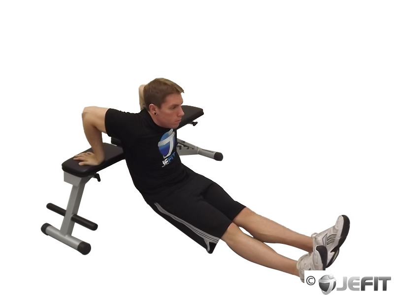 Single Bench Dip Exercise Database Jefit Best