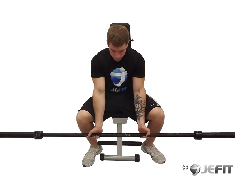 Barbell Seated Palms Up Wrist Curl