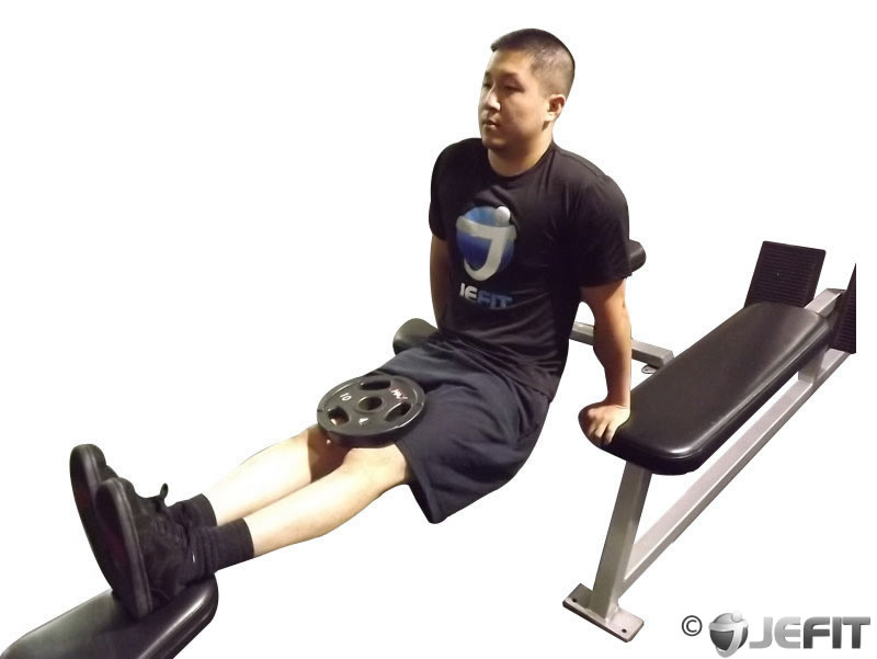 Prime Weighted Three Bench Dips Exercise Database Jefit Best Pdpeps Interior Chair Design Pdpepsorg