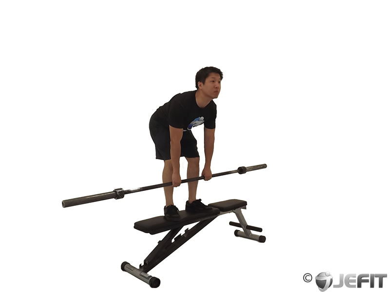 Barbell Stiff Leg Deadlift on Bench