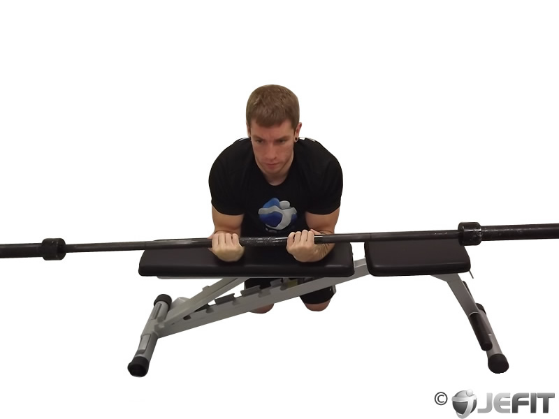 Barbell Palms Up Wrist Curl Over A Bench