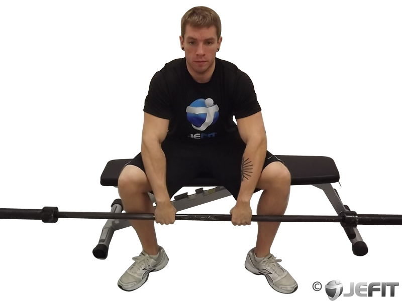 Barbell Seated Palms Down Wrist Curl