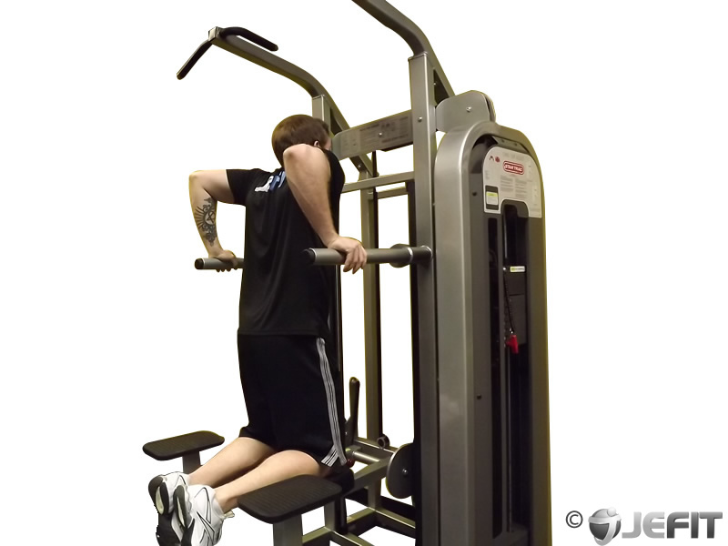 Machine Assisted Dip Exercise Database Jefit Best